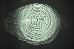 Pietro Pirelli, Idrofoni o Lampade Sensibili